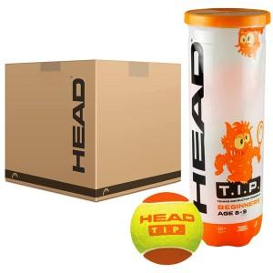 HEAD - TIP Green (Stage 2) 72 Darabos Gyerek Teniszlabda